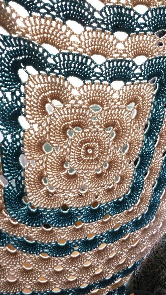Crochet Pattern Virus Blanket : Thursday Throwback Crochet