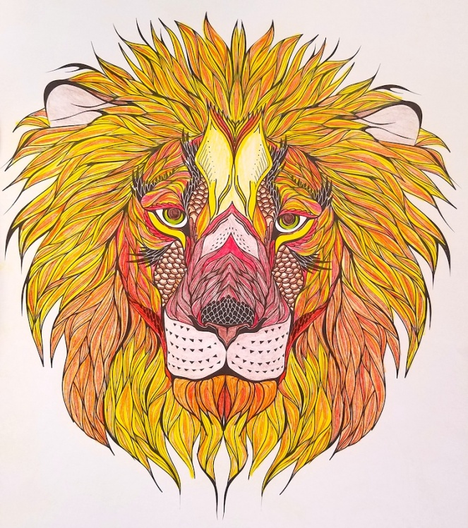 This Lion Was My Mindful Meditation Exercise Last Week I Have Always Loved To Color And A Pretty Large Collection Of Adult Coloring Books