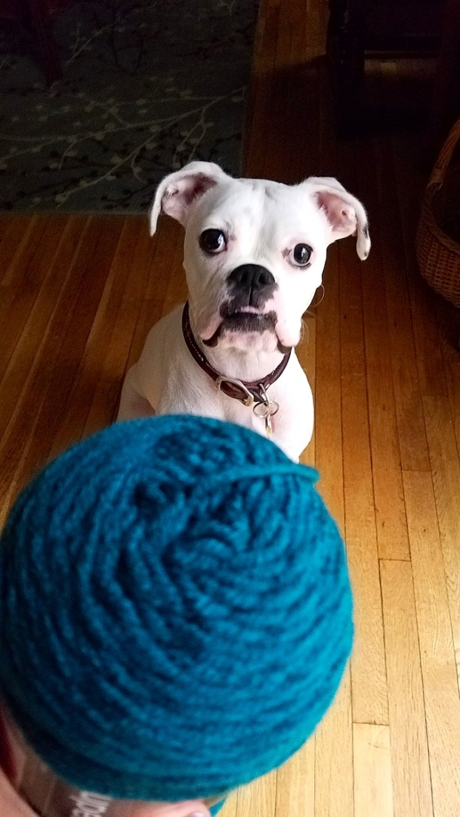 pearl-yarn1